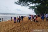 DPRD Kotim dukung pemkab gandeng investor kembangkan Pantai Ujung Pandaran