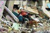 Disdikbud Sulbar: 59 sekolah di tiga kabupaten rusak terdampak gempa magnitudo 6,2