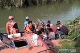 BKSDA: Warga meninggal di Sungai Batang Sikabau Pasaman Barat belum pasti diterkam buaya
