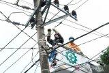 PLN pulihkan 93 persen gardu listrik terdampak gempa Sulbar