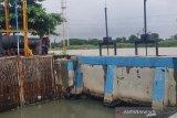 Jasad sepasang bayi kembar tersangkut di pintu rumah pompa di Semarang