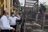 Polda Kalbar sita 15 satwa dilindungi di Mempawah