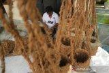 Penyandang disabilitas Sodik (55) menyelesaikan pembuatan pot berbahan sabut kelapa di Desa Bongkot, Kecamatan Peterongan, Kabupaten Jombang, Jawa Timur, Kamis (21/1/2020). Pelaku Usaha Kecil dan Menengah (UKM) tersebut menyatakan kesulitan memasarkan produk kerajinan pot berbahan limbah sabut kelapa yang dijualnya mulai Rp 10 ribu-Rp 30 ribu per buah ini karena belum memiliki pangsa pasar tetap. Antara Jatim/Syaiful Arif/zk.