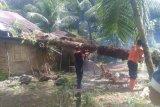 Tertimpa pohon, rumah warga Agam rusak