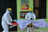Kasus positif COVID-19 bertambah 146 orang di Tarakan
