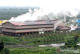 Ekspor CPO dominasi penerimaan bea dan cukai yang di Nunukan