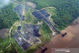 Wah, Riau hanya targetkan Rp10 miliar PNBP dari batubara