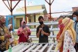 Jaga ketahanan pangan, masyarakat Pekalongan dilatih budi daya hidroponik