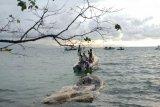 Paus terdampar di perairan Taman Nasional Bunaken