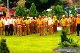 Data tenaga honorer Papua diserahkan ke Menpan RB