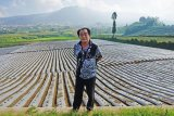 Bupati Banjarnegara ajak petani kembangkan mina padi