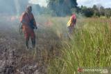 Terbakar, 4,5 hektare savana Taman Nasional Rawa Aopa Watumohai