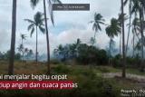 Info terkini: Tiga hektare lahan di Bintan terbakar