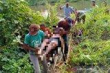 Seorang warga tewas tenggelam usai mencuri kelapa sawit