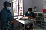 Klinik Hewan Darurat Gempa Sulbar telah salurkan satu ton makanan kucing