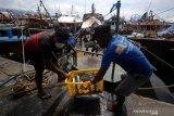 Harga Ikan Melonjak Dampak Cuaca Buruk