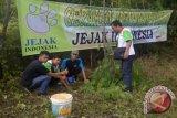 Jejak Indonesia tanam 100 ribu bibit pohon  produktif