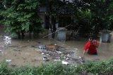 Banjir akibat meluapnya Sungai Bengawan Solo
