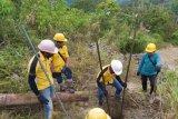 PLN berhasil pulihkan 100 persen jaringan kelistrikan di Sulawesi Barat