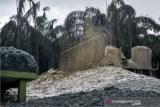 Gas bercampur lumpur masih menyembur dari lubang di Pondok PesaSemburan gas bercampur lumpur di Pondok Pesantren Al-Ihsan, Kota Pekanbaru, Riau, Sabtu (6/2/2021). Semburan gas bercampur lumpur berlangsung sejak tanggal 4 Februari dari lubang yang dibuat pengurus pondok pesantren untuk mencari sumber air, dan insiden itu telah merusak bangunan dan lingkungan sekitar sehingga santri dan warga harus diungsikan. ANTARA FOTO/FB Anggoro/foc.