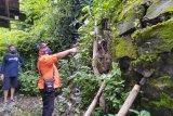 BPBD Yogyakarta minta warga mewaspadai area rawan longsor