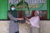 Polbangtan YoMa dorong Kostratani BPP Playen menjadi pusat penggerak pertanian