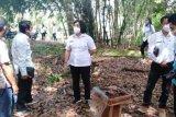 Pemkab Gumas berupaya kembangkan Hurung Bunut sebagai Desa Wisata