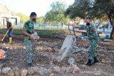 Artikel - Ketika TNI AU menyulap tanah berkarang menjadi kebun sayur