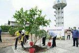 Semen Gresik hijaukan area Pabrik Rembang dan resmikan The Wabi