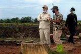 Pemerintah siapkan strategi percepat penanaman di Dadahup