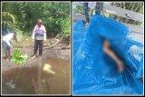 Warga Pulpis temukan potongan kaki seorang nelayan diduga dimangsa buaya