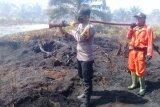 BPBD: Tim gabungan masih padamkan kebakaran lahan sawit