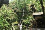 Pengelola wisata rumah pohon di Donggala berharap dukungan pemerintah