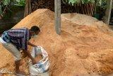 PLN NTB manfaatkan sekam dan serbuk kayu menjadi sumber energi