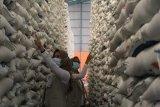 Bulog pastikan stok beras Lampung aman