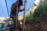 TNI bantu perbaiki tenda pengungsi gempa Sulbar di Mamuju
