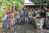 Dinas Tanaman Pangan Sultra bantu Insektisida petani Kolaka