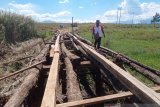 Dishub Jayawijaya membuka jalan di perkampungan sentra pertanian