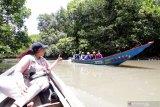 Wisatawan menaiki perahu menyusuri hutan mangrove di Bedul, Taman Nasional  Alas Purwo, Banyuwangi, Jawa Timur, Kamis (18/2/2021). Wisata Pantai Bedul seluas 1.200 hektar yang menjadi tempat konservasi mangrove itu menjadi menjadi salah satu destinasi wisata alam yang menawarkan jelajah hutan mangrove di Banyuwangi. Antara Jatim/Budi Candra Setya/zk.