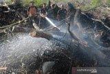 Upaya Pemadaman Kebakaran Lahan Gambut Di Aceh Barat