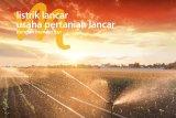Kabar gembira dari PLN dan Bank Mandiri untuk pegiat agrikultur Indonesia