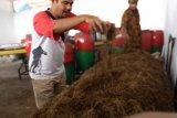 DLH Kota Solok olah sampah organik jadi pupuk kompos