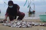 Pengunjung memilih ikan yang akan dibeli dari nelayan saat mengisi libur akhir pekan di Pantai Wisata Jumiang, Pamekasan, Jawa Timur, Minggu (21/2/2021). Selain menikmati libur akhir pekan pengunjung destinasi wisata tersebut, juga menyempatkan belanja ikan dari nelayan yang baru pulang melaut. Antara Jatim/Saiful Bahri/zk