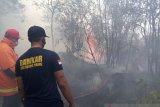 46 kasus kebakaran terjadi di Tanjungpinang Januari-Februari