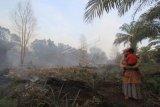 Petani menggendong anaknya saat melihat kebun nanas yang ikut terbakar di Kecamatan Medang Kampai, Dumai, Riau, Senin (22/2/2021). Kebakaran lahan gambut seluas 11 hektar yang menjalar ke perkebunan warga tersebut disebabkan cuaca panas selama tiga pekan terakhir. ANTARA FOTO/Aswaddy Hamid/rwa.