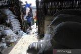 Pekerja mengangkut garam ke dalam gudang di desa Santing, Losarang, Indramayu, Jawa Barat, Rabu (24/2/2021). Kementerian Perindustrian memprediksi kebutuhan garam nasional tahun 2021 mencapai 4,6 juta ton. ANTARA JABAR/Dedhez Anggara/agr