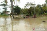 Banjir masih kepung warga Muaragembong Bekasi