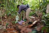 Seorang ODGJ di Bartim ditemukan meninggal di kebun karet