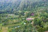 Taman Eden 100 di Lumban Julu Kabupaten Toba, Sumut tawarkan edukasi wisata alam