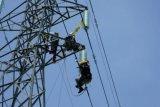 PLN lakukan pemeliharaan rutin transmisi sistem Timor
